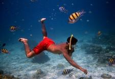 Ko Rok snorkelling