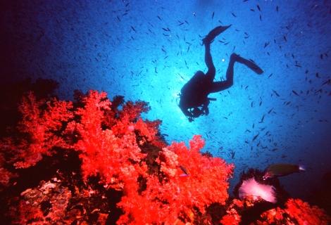 Ko Lanta scuba diving